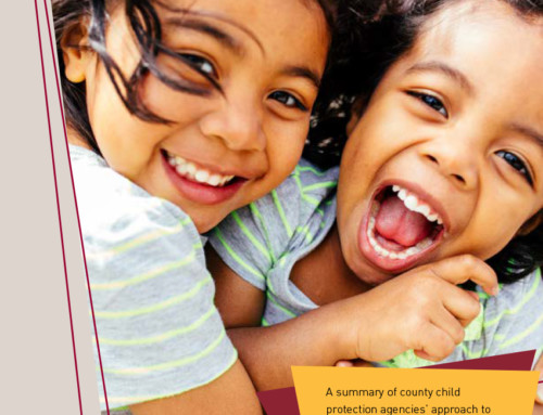 Siblings in the Child Welfare System: Implications for Policy and Practice (HT #01)